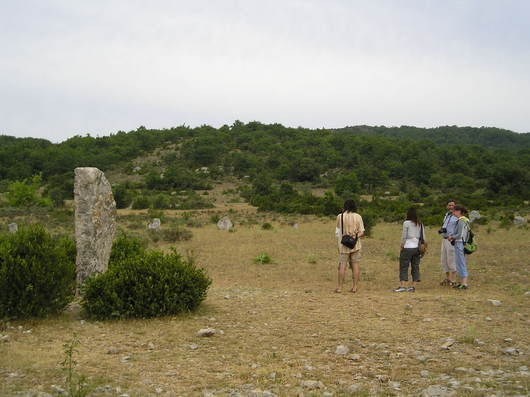 Provence_suite_265